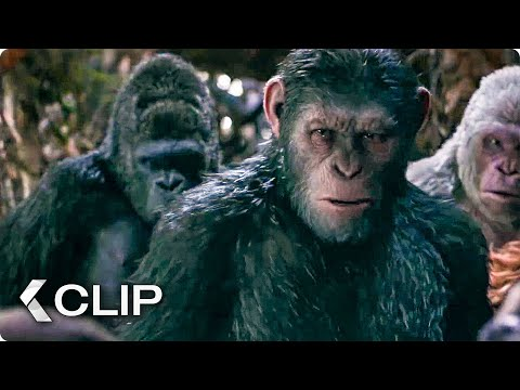 I Did Not Start This War Movie Clip - War for the Planet of the Apes (2017)