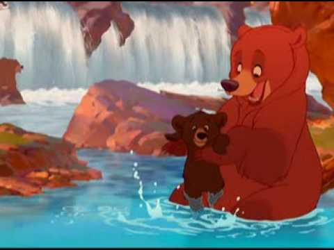 Video Bienvenido - Tierra de osos - Español Latino download in MP3, 3GP, MP4, WEBM, AVI, FLV January 2017