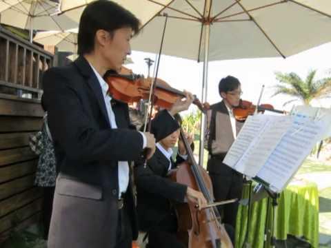 在花蓮斯圖亞特民宿婚禮現場演奏婚禮進行曲