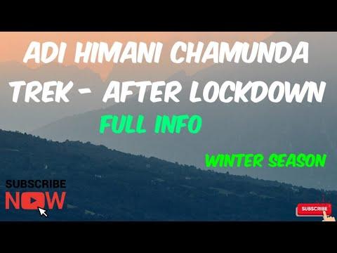 Adi Himani Chamunda Trek Part 1 Full Trek Route   After Lockdown   Palampur, Himachal Pradesh