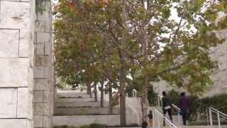 #980 Central Garden - Die Treppe zum Garten