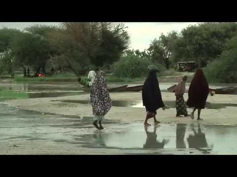 Niger : fuir le Nigéria