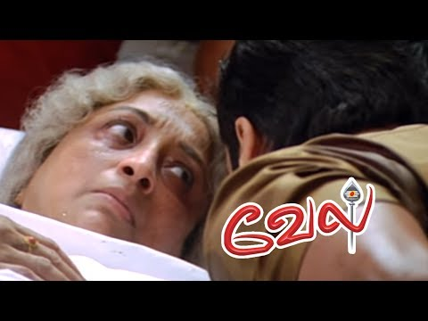 Video Vel | Vel Movie | Vel Tamil Movie Scenes | Suriya Rescues Lakshmi | Surya threatens Kalabhavan Mani download in MP3, 3GP, MP4, WEBM, AVI, FLV January 2017