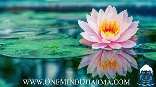 Guided Equanimity Meditation