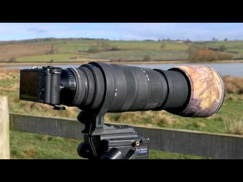 Pentax Q-S1 with 1.4x teleconverter and Sigma 150 to 500mm lens test