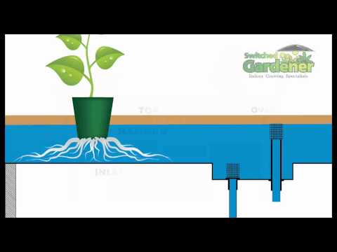 Hydroponic - Flood & Drain Basic Rundown