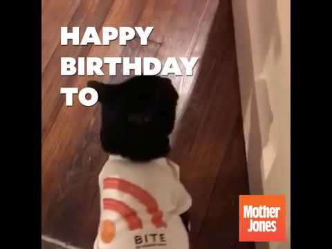 Bite Podcast's Very First Birthday