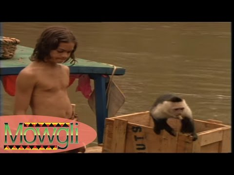 Dans la Jungle de Seonee, Part 2 - Mowgli