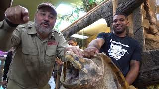 Reptile Room Tour January 2018 with Giant Snapping Turtle by Prehistoric Pets TV