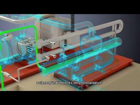Cogenerazione da biomassa: come funziona un impianto a ciclo Rankine organico