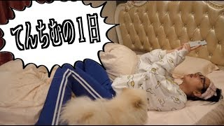 YouTuberの1日:てんちむ編