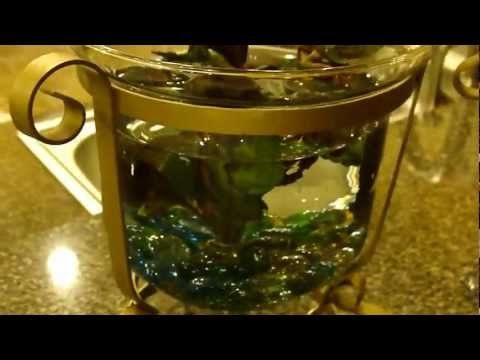 How To Make A Custom Fish Bowl
