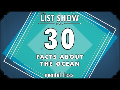 30 Fascinating Ocean Facts