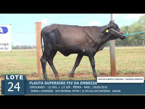 LOTE 24 - FLAUTA SUPERSIRE FIV -