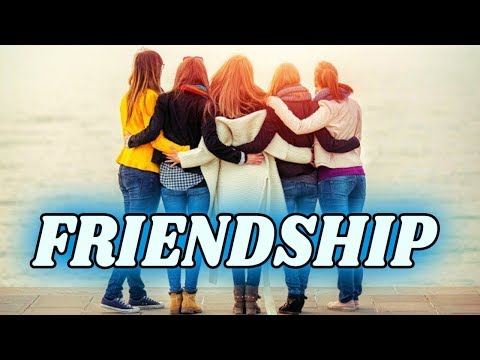 Inspirational Friendship Quotes   Best and Amazing quotes about friends