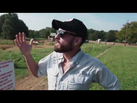 Horseback Riding at Shelby Farms Park - Tennessee Valley Uncharted