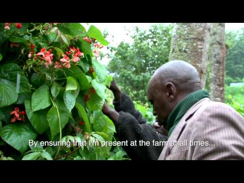 Celebrating the Kenyan Farmer: Francis Muiruri and James Ngata