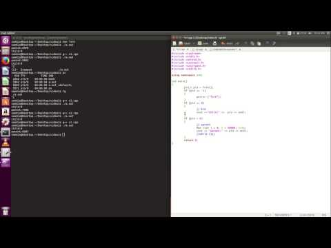 using fork() and exec() in C (видео)