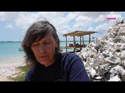 Bonaire vlog#5: Strijd om de karko
