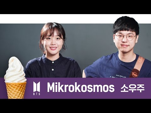 "BTS ""소우주(Mikrokosmos)""  Acoustic Cover"