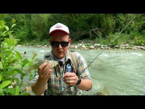сезоны рыбалки в россии