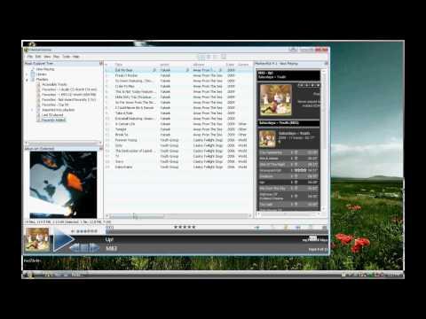 Media Monkey - MP3 player and Media Monkey Gold
