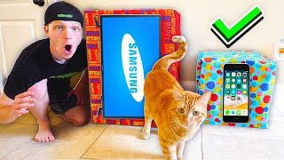 Video MY CATS CHOOSE WHICH MYSTERY BOX I OPEN! MP3, 3GP, MP4, WEBM, AVI, FLV Juni 2019