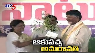 CM Chandrababu Over Green Amaravati | Plantation Program in Amaravati