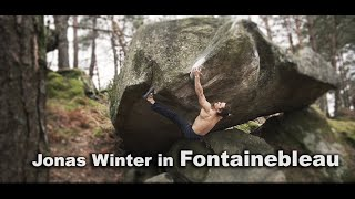 Jonas Winter in Dune 8b/+ Duel 8a and more - Just another Fontainebleau Clip #3 by Climb to Heaven