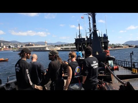 Bob Barker crew ready to stop Japanese whaling