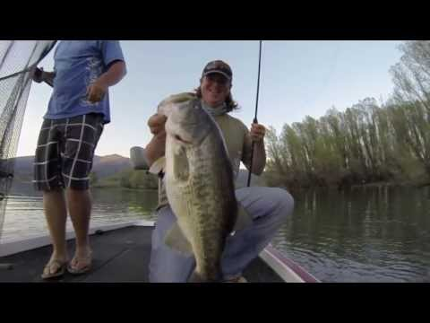 spittin - Matt Allen and Tim Little crush giant bass on the newest Poppin' frog on the market, the River2Sea Spittin' Wa! You can buy it directly at http://www.tacklew...