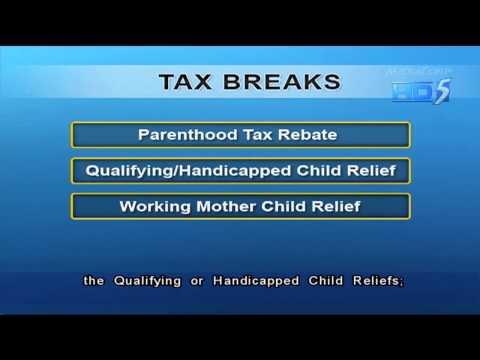 More than S$8.3b disbursed in tax rebates to encourage procreation - 20Jan2013