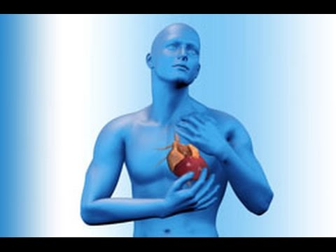 Video Curing heart blockage without surgery(இதய இரத்தக் குழாய் அடைப்பை  குணமாக்க) in Tamil download in MP3, 3GP, MP4, WEBM, AVI, FLV January 2017