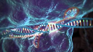 CRISPR - Cas9: Gene editing technology