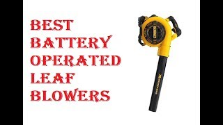 7. Best Battery Operated Leaf Blowers 2019