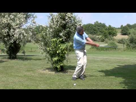How to hit a low golf shot under trees – video golf tip from pro