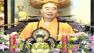 Kinh Vô Lượng Thọ Huyền Nghĩa tập 08 - Pháp Sư Tịnh Không