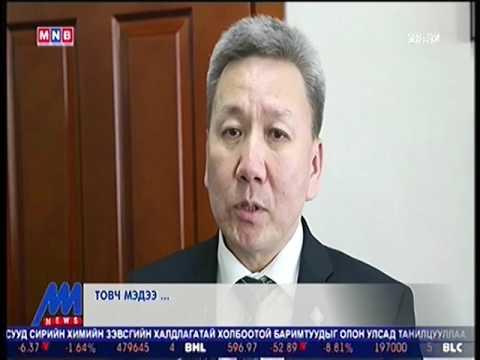 """""""Шинэ Монголын төлөө санаачилга"""" байгууллагаас Монгол улсыг олон улсын тавцанд гаргах ажлуудыг хийж эхэлнэ"""