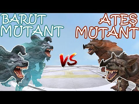 Video BARUT MUTANT KURT VS ATEŞ MUTANT KURT-2 ATEŞ MUTANT KURDUNU TAKLAYA GETİRDİK :D download in MP3, 3GP, MP4, WEBM, AVI, FLV January 2017