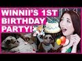 Winnii's 1st Birthday Party!
