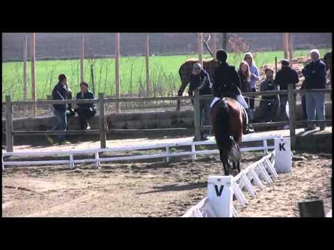 Doma Clasica Juegos Deportivos de Navarra (2)