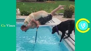 Video Try Not To Laugh Watching Funny Animal Fails Compilation November 2018 #1 - Co Vines✔ MP3, 3GP, MP4, WEBM, AVI, FLV Januari 2019