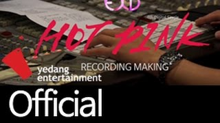 [EXID(이엑스아이디)] HOT PINK 핫핑크 RECORDING MAKING