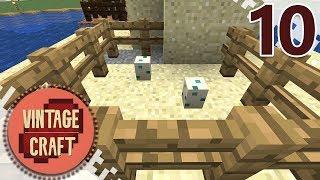 Minecraft VintageCraft Season 2 - EP10 - Taking Shape! (Gameplay Video)