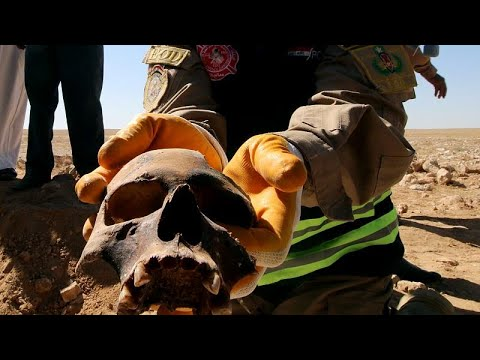 Irak: Massengrab mit Überresten von 300 Kurden ausgeh ...