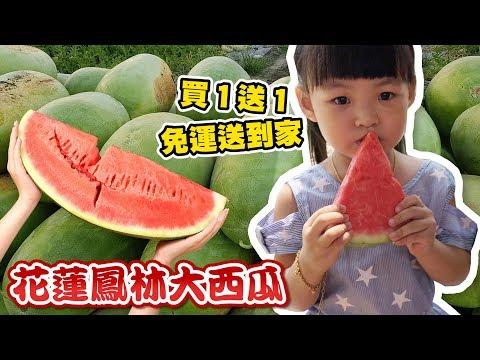 【花蓮鳳林】 買一送一 紅肉大西瓜   甜度高達 15 度