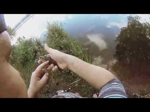 как ловить рыбу на канале москвы