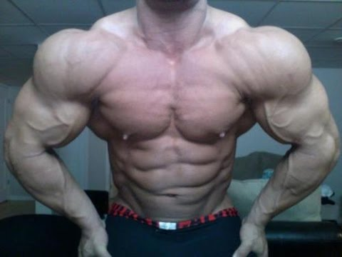 fitness - Looking for custom nutrition and training programs and to work close with me as a strength and bodybuilding coach for affordable prices? Check out http://www.muscle-massochist.com/services/...