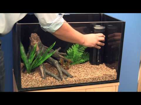 Setting up a Goldfish Aquarium