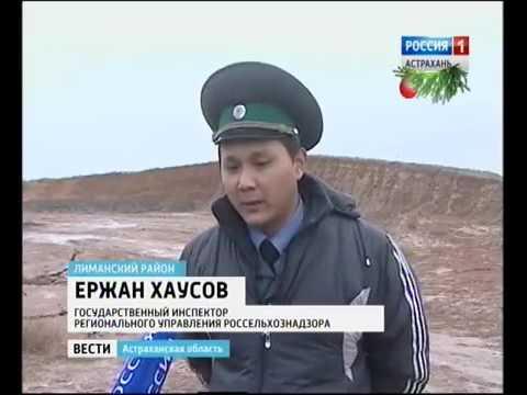 О выявлении Россельхознадзором несанкционированной свалки и карьера в Астраханской области